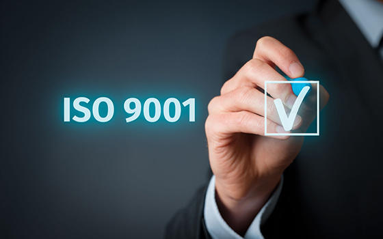 Auditor Interno ISO 9001:2015
